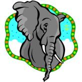 What do elephants have to do with HSOSC? Read on!
