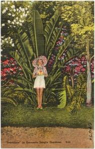 Vintage Sarasota Postcard
