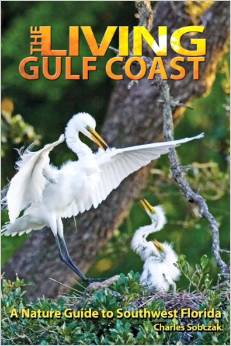 The Living Gulf Coast author leads a discussion at the Historical Society of Sarasota County January 21 2015
