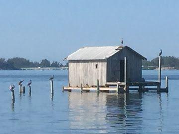 Last net camp in Cortez, Florida