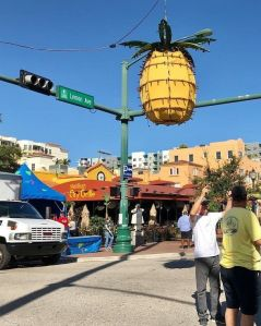 Jan Thornburg's photo of the pineapple Sarasota drops for New Year's Eve